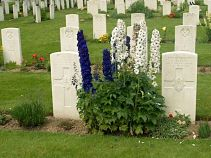 Essex Farm Flowers