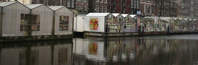 Singel Floating Flower Market photo Massimo Catarinella